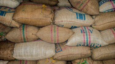 輸入小麦の残留農薬グリホサートとグルテン不耐症の意外な関係